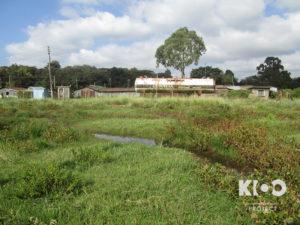 VFW_Kenya2014_Elizabeth-0462